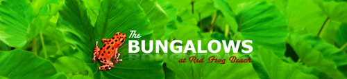 Red Frog Bungalows Panama Surf Resort